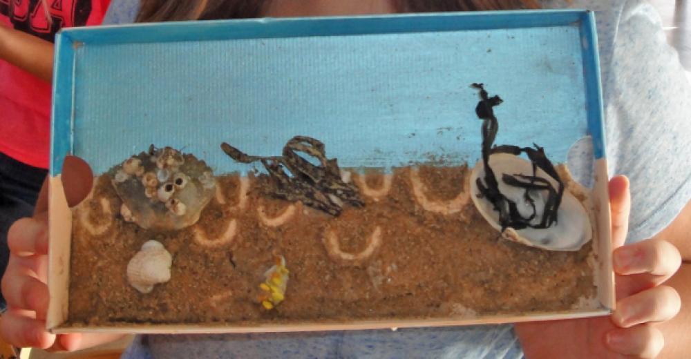 En collage af strandmaterialer